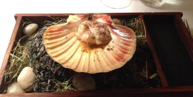 Coquille part 1: cooked to perfection + truffle